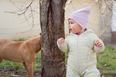 Small child playing peekaboo with dog royalty free stock photos