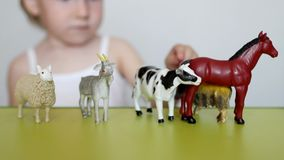 A small child plays animal life with learning toys, develops logic and motility, the ability to distinguish animals