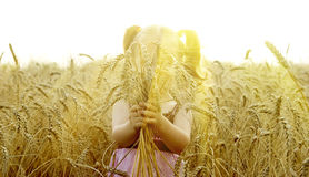 The small child plays in the field Stock Photography