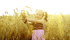 The small child plays in the field Stock Image