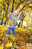 A small child plays with a leaf in an autumn forest. A little child is playing with leaves in an autumn forest. Yellow forest of leaves stock photos