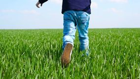 A small child runs on the green grass. Close-up of children`s feet. Slow motion stock video footage