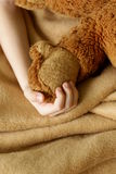 Small child's hand holding plush toy Stock Photo