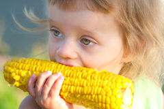 Small child to eat boiled corncob Stock Images