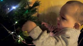 A small child up to one year old, the infant plays with the New Year tree, touches garlands and toys. He is very interested in wha. T it is stock footage
