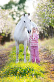 Small child with a white horse in apple orchard. At sunset Royalty Free Stock Photo