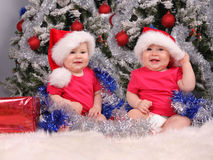Small children in caps about christmas tree Stock Photos