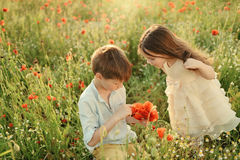 Small children on the field with poppies Royalty Free Stock Photography