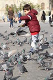 Small children who feed the birds. Royalty Free Stock Photography