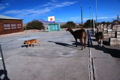 Small Chilean village basketball court stock photos