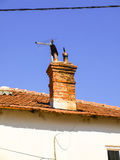 Small chimney on the roof of red tiles Stock Image