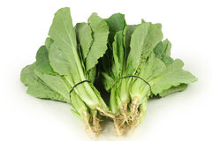 Small Chinese Cabbage Stock Photo