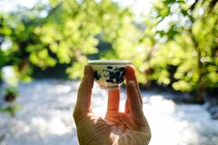Small chinese porcelain cup in front of water and green leaves b Stock Image