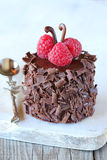 Small chocolate cake Royalty Free Stock Images