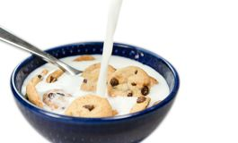 Small chocolate chip breakfast cookies in cereal bowl almost full with milk stock photo