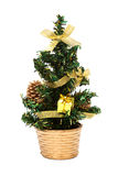 Small Christmas tree Stock Photo