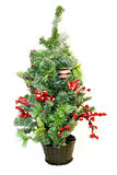 Small Christmas tree Stock Images