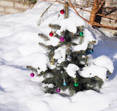 Small Christmas tree with christmas decorations in the garden covered by snow. Close up on small Christmas tree with christmas decorations in the garden covered Royalty Free Stock Images