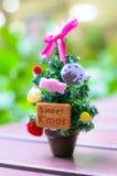 Small Christmas tree. For Christmas day Stock Photos