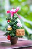 Small Christmas tree. For Christmas day Stock Photography