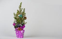 Small christmas tree Stock Photo
