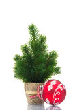 Small christmas tree with red ball Royalty Free Stock Image
