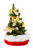 Small christmas tree in Santa Claus Hat Stock Images