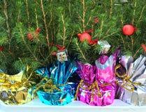 Small christmas trees Stock Photo