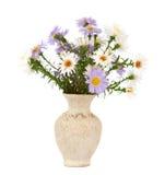 Small chrysanthemum flowers Royalty Free Stock Image
