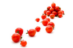Small circle tomato Stock Images