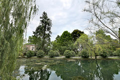 Small city pond Stock Photography