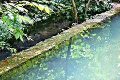 Small city pond Stock Photo