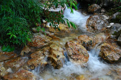 Small clear brook. Running beside brown stones and green grass Royalty Free Stock Photography