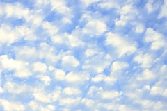 Small cloud. Full in sky Stock Images