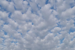 Small clouds are evenly distributed throughout the sky. Small fkuffy clouds are evenly distributed throughout the sky Royalty Free Stock Image