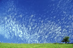 Small clouds spring. Multitude of small white clouds in a sky spring Royalty Free Stock Photography