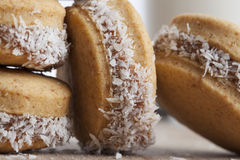 Small Coconut Cookies Stock Image