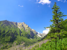 Small cold valley - High Tatras Royalty Free Stock Photos