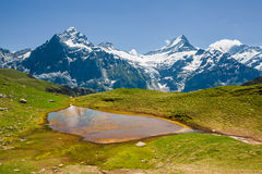 Small colored lake near Bachsee, Schreckhorn Stock Photo