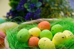 Green nest in a basket with small colorful Easter eggs, decoration, close-up easter concept, holiday tradition, blurred paints. Small colorful eggs in a nest stock image