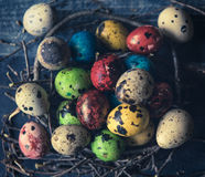 Small and colorful eggs Stock Photo