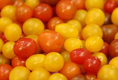 Small colorful tomato Royalty Free Stock Photography