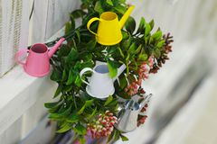 Small colorful watering cans garden miniature stock photo