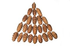 Small cones Stock Images