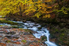 Small corner on Arazas river during in Autumn at National Park o. Autumn scene in Ordesa valley on Huesca, Spain Royalty Free Stock Image