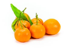 Small Corsican Clementines Royalty Free Stock Photos