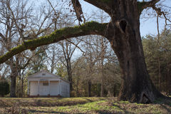 Small Country Church Under the Oaks. Rural Alabama church under massive oak trees on a quiet country road Royalty Free Stock Image