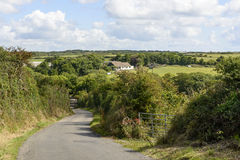 Small country road between hedges, Cornwall Stock Photo
