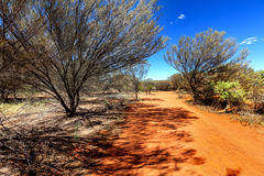 Small country road in hot Australian outback Stock Photography