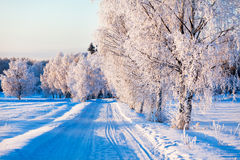 Small country road in winter. On a sunny day stock images